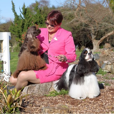 Read More about Debbie Hull, Ebonn American Cocker Spaniels
