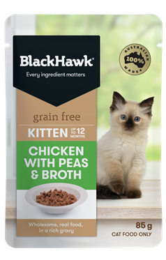 Introducing Kitten Wet Food - Chicken with Peas