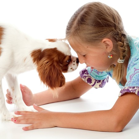 Read More about Best Dog Breeds for Kids